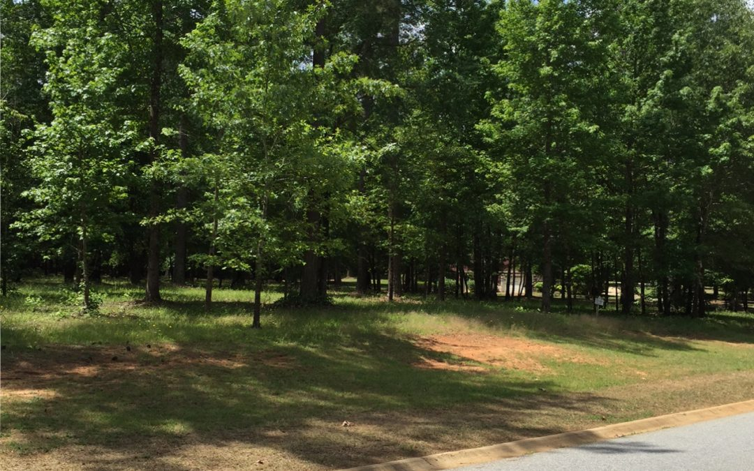 333 Compass Point Homesite 59
