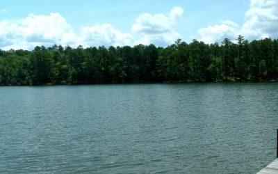 Beautiful Cove Location On Lake Greenwood