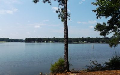 Premier Lakefront Homesite In The Retreat