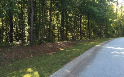Huge 2 Acre Wooded Interior Homesite