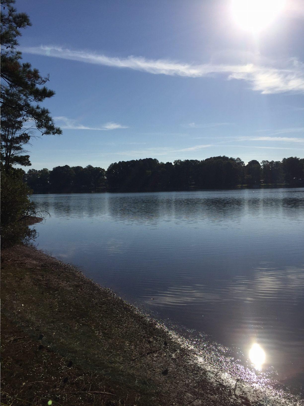 Lake greenwood homes for sale real estate lakefront for Lakefront property under 100k