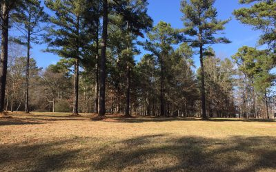 223 Compass Point   GH Homesite 68