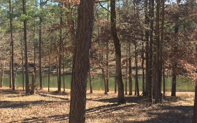 Just Reduced – Cove Homesite In The Plantation