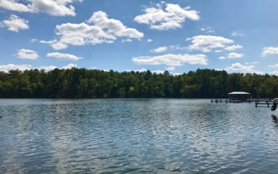 Incredible Price On A Lakefront Homesite