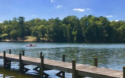 Reduced Price – Cove Homesite With Lake & State Park Views