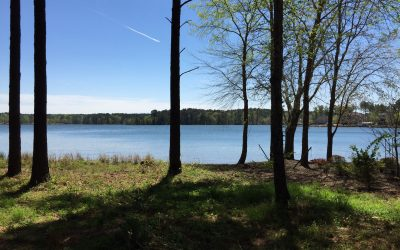 Premier Lakefront Homesite In Compass Point