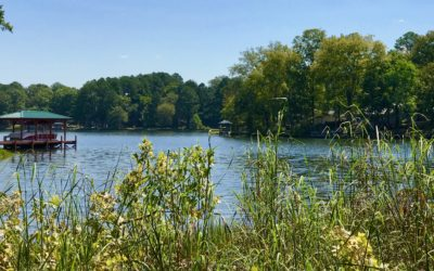 Large Lakefront Cove Property In The Plantation