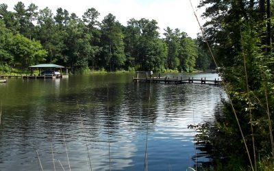 REDUCED – 1.24 Acre Lake Cove Homesite In The Plantation