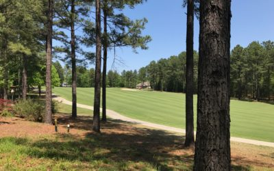 Panoramic Views Of The 5th Fairway