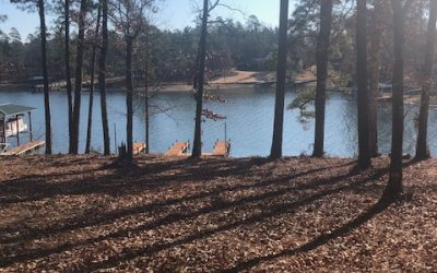 Nice Lake Cove Homesite In The Plantation