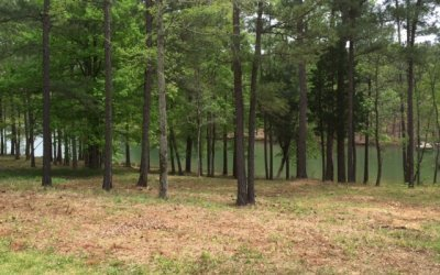 Deep Lake Cove Homesite In The Plantation