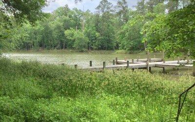 Lake Homesite In Canoe Bay